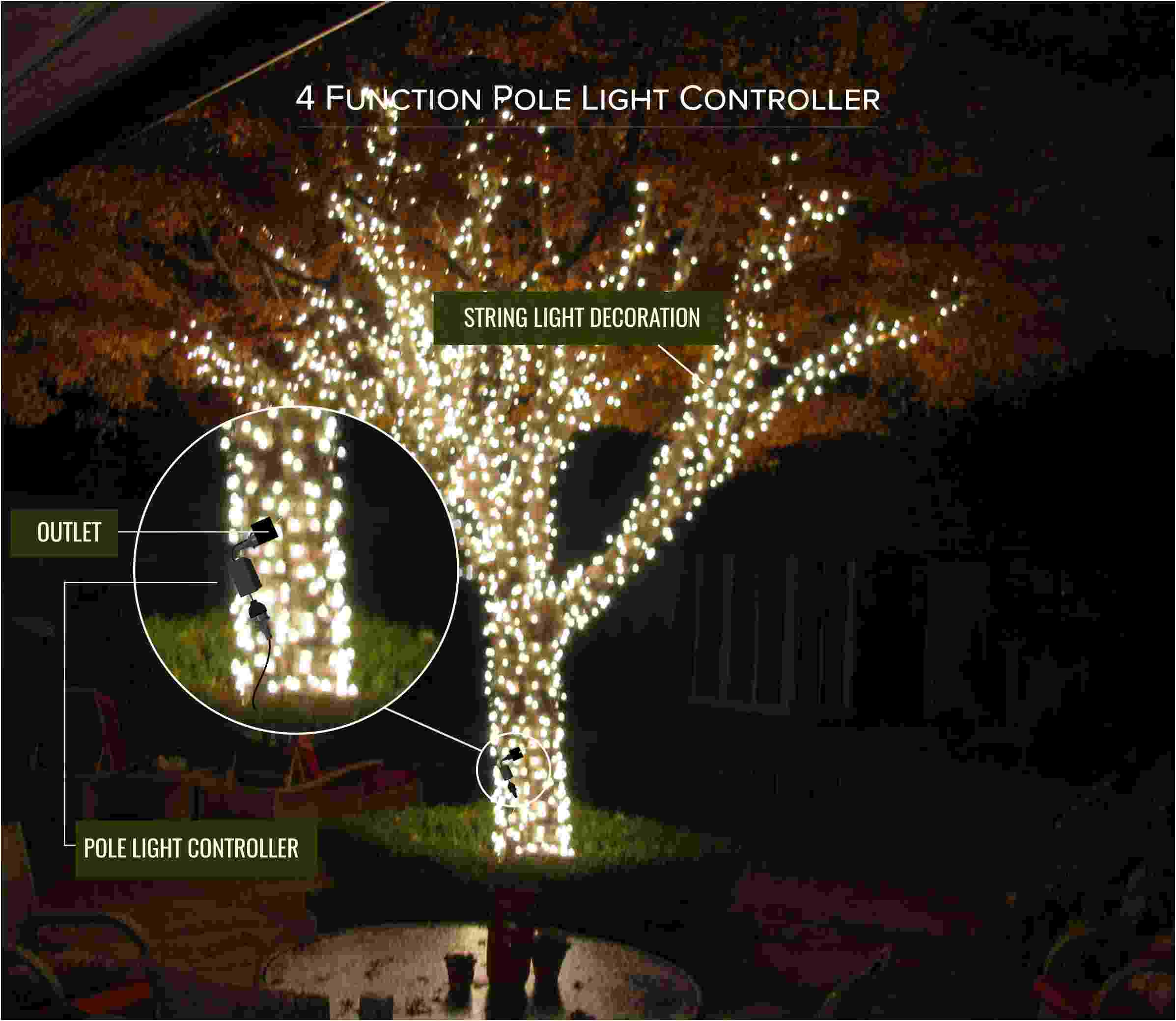 The Flash Controller Shop For Christmas Light Controllers
